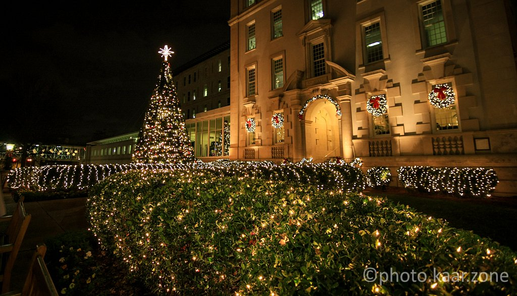 Christmas at Emory